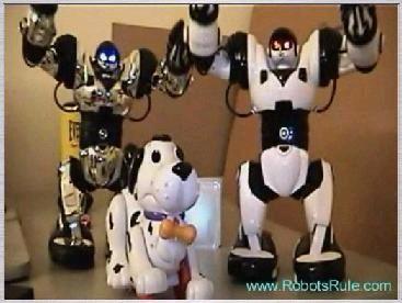 050117 robots rule