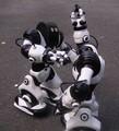 050222 robo hack
