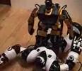 Robonova-1 vs. Robosapien Video